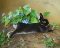 Rabbit and Bush of Violets